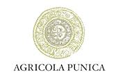 Agricola Punica, Santadi